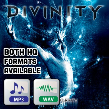The Singularity (LP) - MP3 320k / WAV 24bit Download